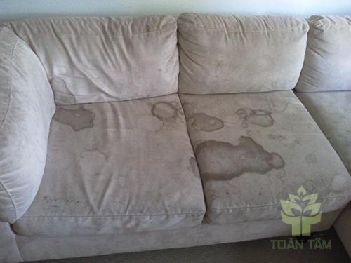Có nên tự giặt ghế sofa tại nhà?