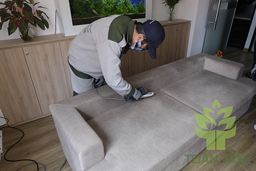 Dịch vụ giặt ghế sofa chuyên nghiệp tại Toàn Tâm