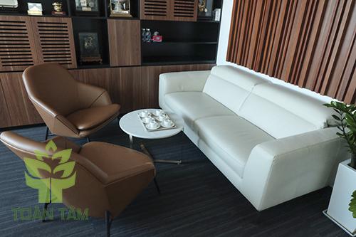 Ghế sofa được ưa chuộng sử dụng hiện nay